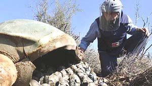 Lebanon Norway Cluster Bombs