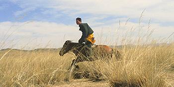 alpitrek 3 mongoli 2