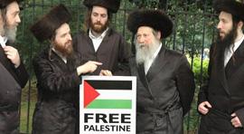 rabbini Free Palestine