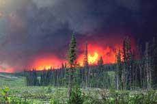 incendi Russia
