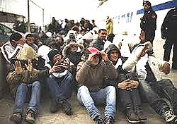 Lampedusa 8