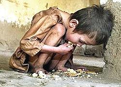 fame 1