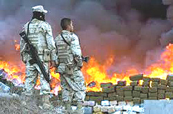 Messico in guerra contro i narcos