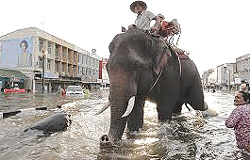 L'alluvione in Thailandia