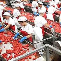 La pugliese Ar Industrie Alimentari