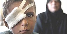 Cecenia bambini