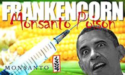 Propaganda contro Obama, grande protettore della Monsanto