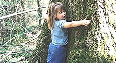 Guarire, abbracciando gli alberi