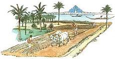 L'agricoltura irrigua al tempo dei Sumeri