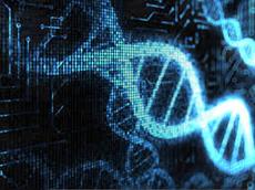 Microonde: effetti permanenti sul Dna e malattie trasmissibili