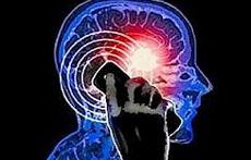 Le microonde causano danni al sistema nervoso