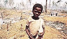 Deforestazione, esodo delle comunità locali