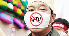 Stop Wto