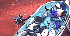 La mattanza dei delfini a Taiji