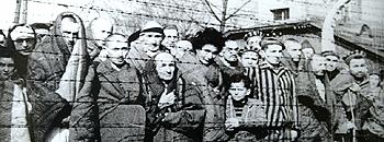 Prigionieri di Auschwitz alla liberazione nel '45