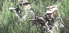Usa, forze speciali