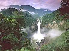 Yasuni Park, Ecuador