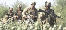 Militari Usa tra i papaveri da oppio in Afghanistan