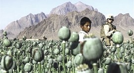 Oppio in Afghanistan