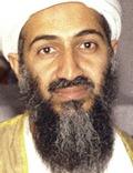 Bin Laden