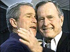 I Bush