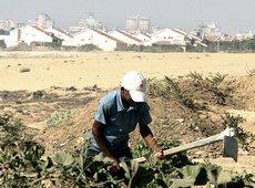 Gaza agricoltore