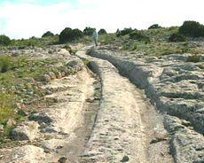 Castellar de Meca, solchi pietrificati sul terreno