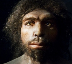 L'Homo Antecessor scoperto in Spagna, visse 1,2 milioni di anni fa?