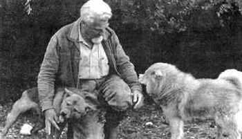 Lorenz con i suoi cani