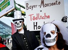 Germania, proteste contro la fusione tra Bayer e Monsanto