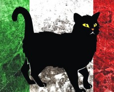 Gatto Nero Italia