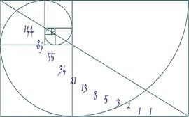 La spirale aurea di Fibonacci