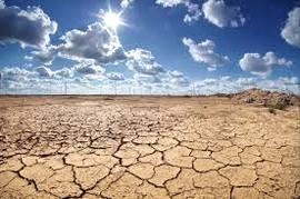 Desertificazione dei suoli