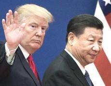 Trump e Xi-Jinping