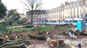 Francia, una piazza disboscata in Aquitania